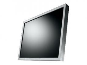 EIZO FlexScan S2133-GY - LED-Monitor - 54 cm