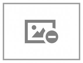 Datalogic RS232-Kabel, glatt IBM